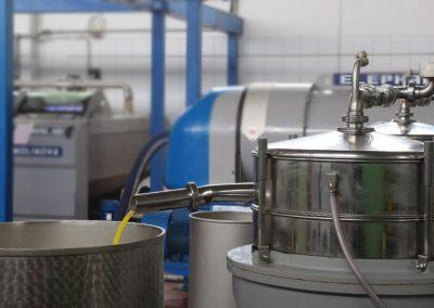 Molitura delle olive per produrre l'olio di Sicilia