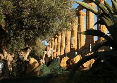 Olio Diodoros della Valle dei Templi di Agrigento - Sicilia